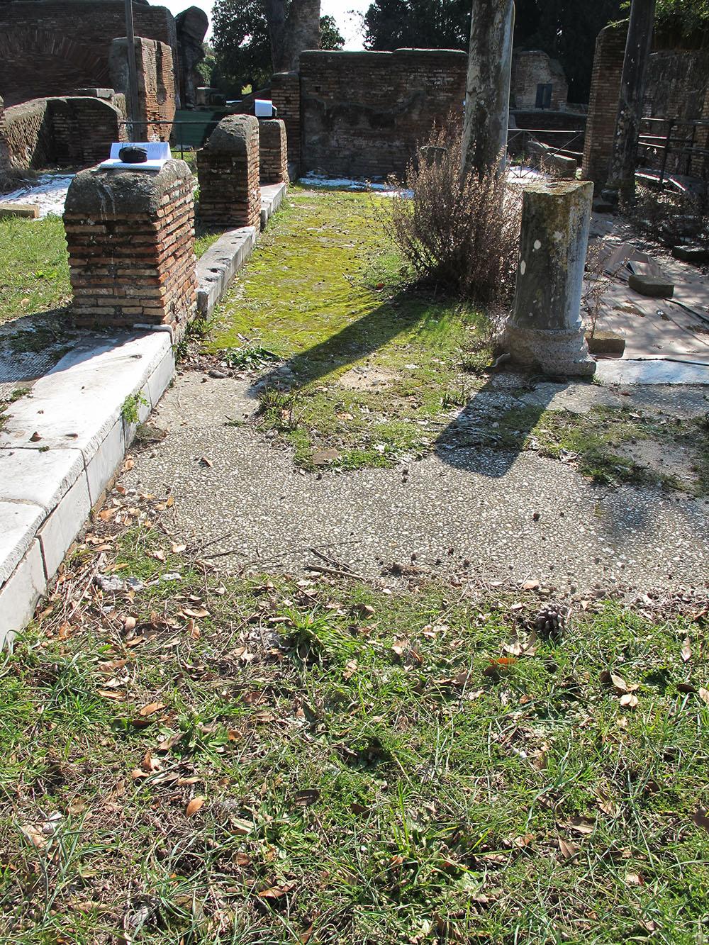 02 dettagli del manto erboso  aderente ai mosaici pavimentali