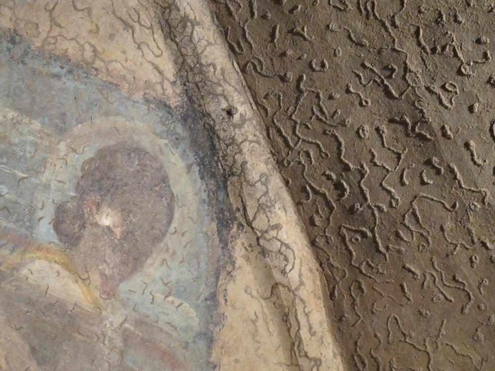 08 Vermicolazioni argillose presenti sulle superfici