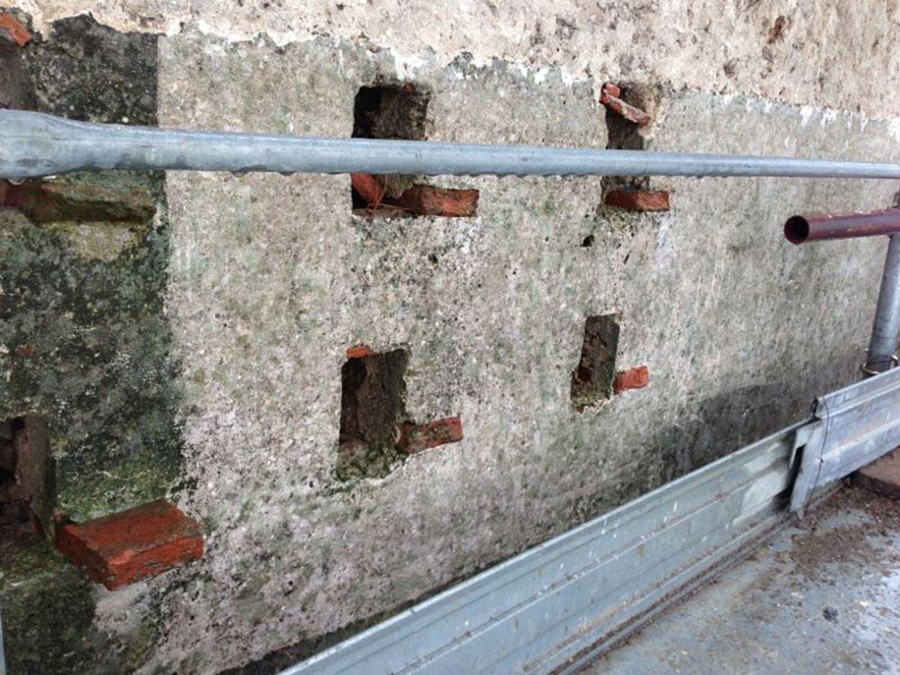 10 gli intonaci delle colombaie durante la rimozione degli attacchi biologici